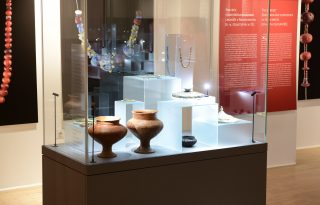 Steklena vitrina v Dolenjskem muzeju